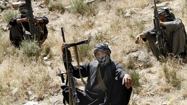 Boyeviki dvijeniya Taliban* - Sputnik Oʻzbekiston