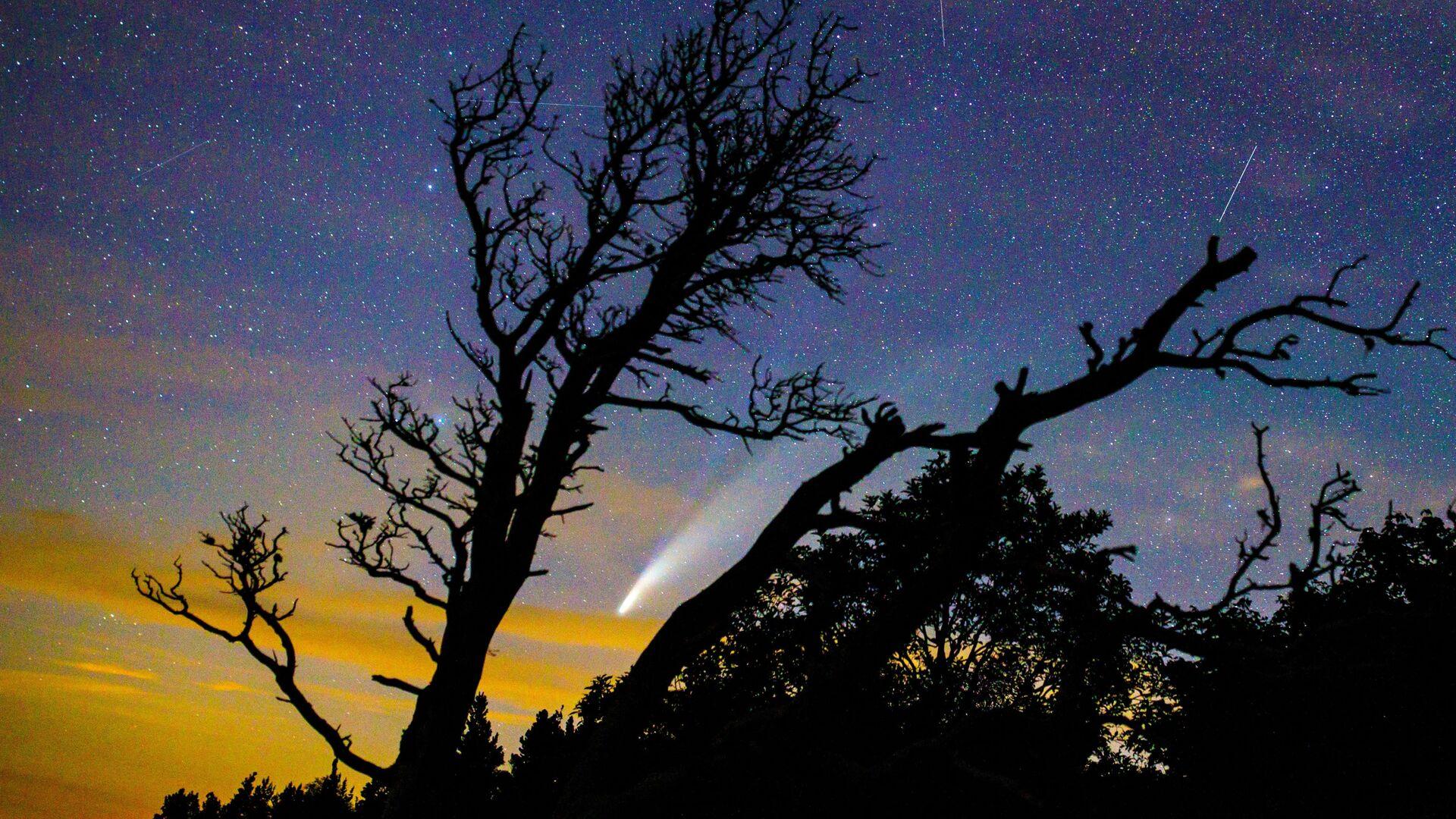 Комета NeoWise в небе над Краснодарским краем - Sputnik Узбекистан, 1920, 06.10.2021