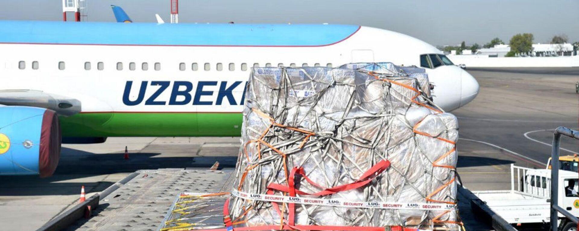 В Узбекистан прибыл гуманитарный груз из Германии - Sputnik Узбекистан, 1920, 28.07.2020