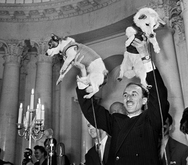 Академик Олег Газенко и собаки-космонавты Белка и Стрелка на пресс-конференции, посвященной полету космического корабля-спутника с подопытными животными  - Sputnik Узбекистан