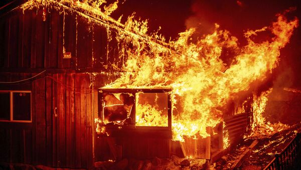 Лесные пожары в Калифорнии, США - Sputnik Ўзбекистон