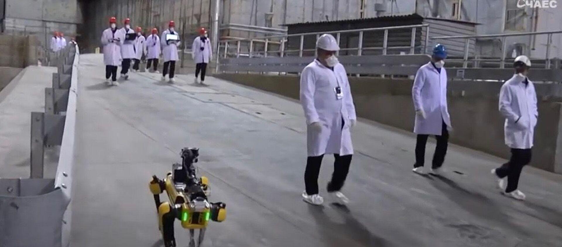 Робот-пес вынюхивает радиацию на Чернобыльской АЭС - Sputnik Узбекистан, 1920, 28.10.2020