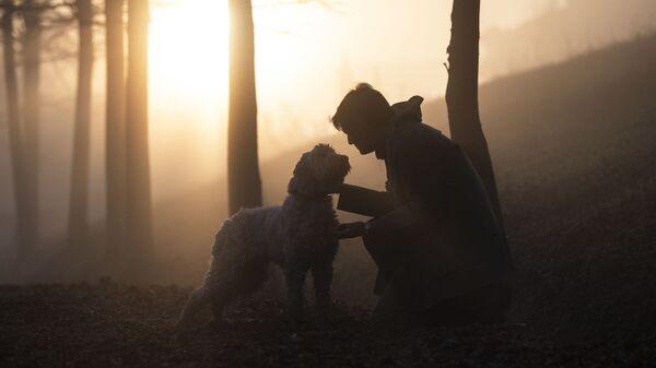 Мужчина с собакой в осеннем лесу - Sputnik Узбекистан