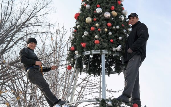 В Ташкенте начали установку главной ёлки страны - Sputnik Узбекистан
