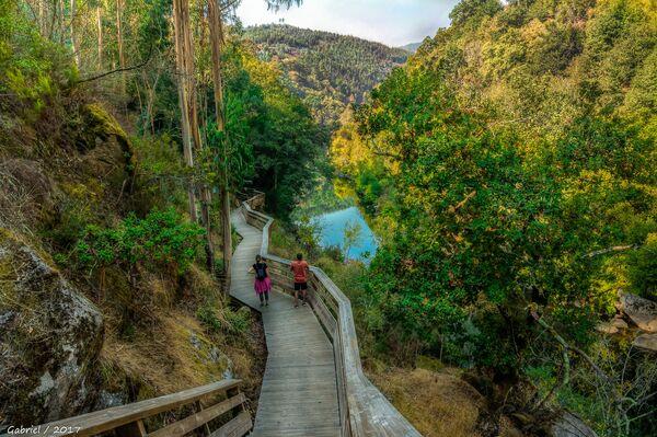 Turisticheskaya zona Pasarelas del Paiva v Portugalii, stavshaya obladatelem zvaniya World's Leading Adventure Tourist Attraction 2020 - Sputnik Oʻzbekiston