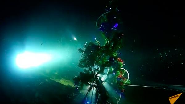 Крымские дайверы установили елку на дне Черного моря. Как они умудрились подключить гирлянду? - Sputnik Узбекистан