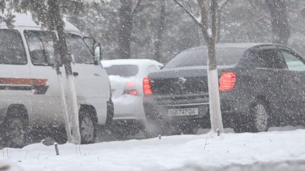 Ташкент снова оказался в снежном плену  - Sputnik Ўзбекистон