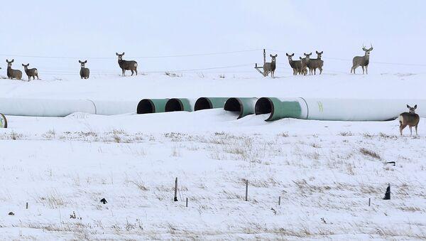 Трубы для нефтепровода Keystone XL в Гаскойне, Северная Дакота - Sputnik Узбекистан
