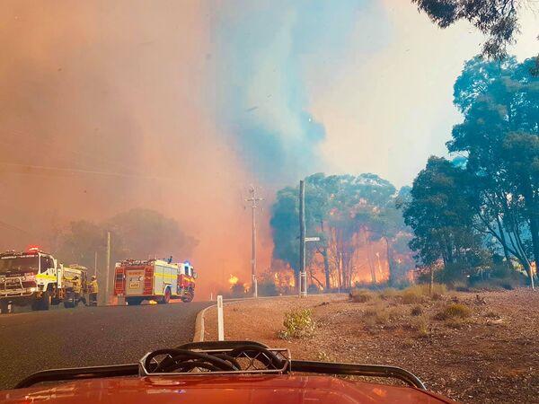 В Австралии снова начались ужасающие пожары. - Sputnik Узбекистан