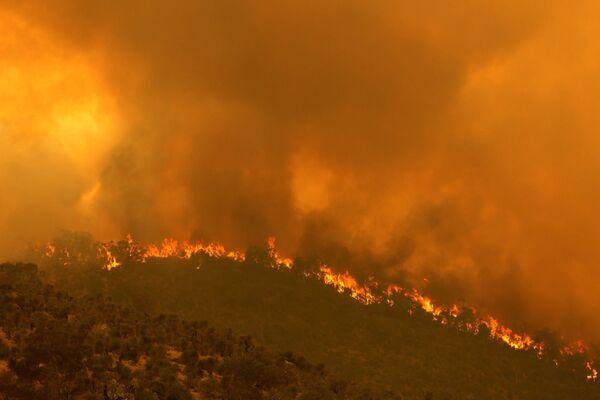 По словам ученых, в этом году число циклонов, скорее всего, будет увеличиваться. - Sputnik Узбекистан