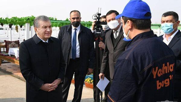 Шавкат Мирзиёев посетил виноградарскую кооперацию «Файзли боглар сари» в Алтыарыкском районе. - Sputnik Ўзбекистон