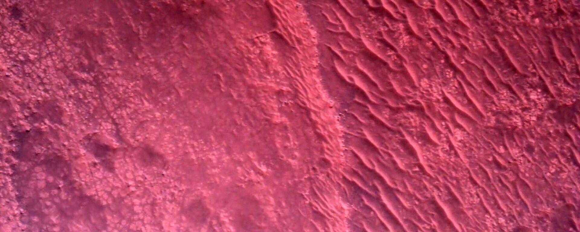 Поверхность Марса - Sputnik Ўзбекистон, 1920, 24.08.2021