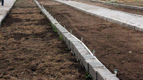 Выращивание дождевых червей - Sputnik Узбекистан