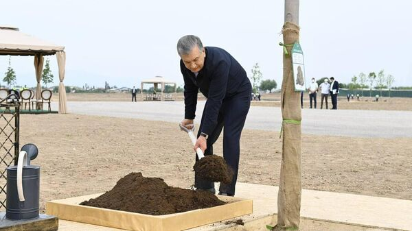 Закладка нового парка в Кибрайском районе Ташкентской области - Sputnik Узбекистан