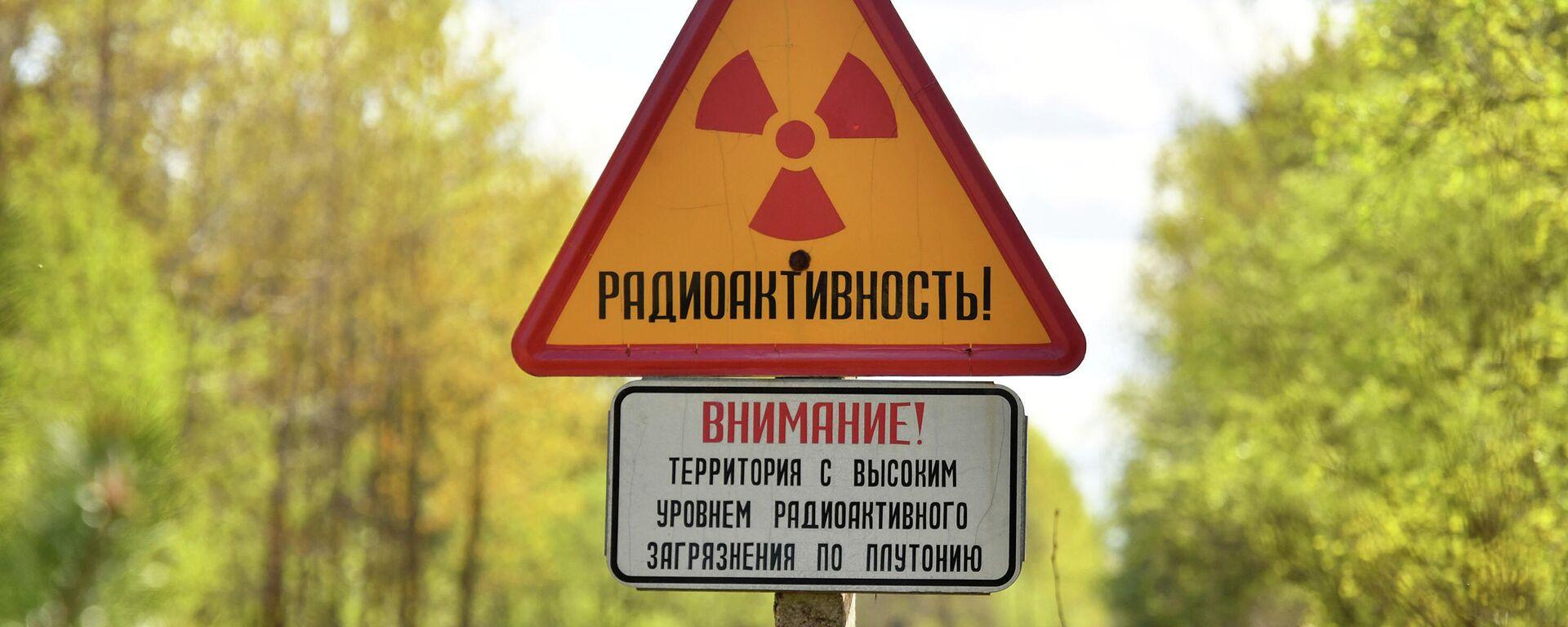 Знак радиоактивной опасности у въезда в отселенную и упраздненную деревню Бабчин Хойницкого района Гомельской области - Sputnik Узбекистан, 1920, 13.05.2021