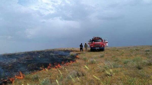 В Джизакской области загорелся участок земли в 15 гектар - Sputnik Узбекистан