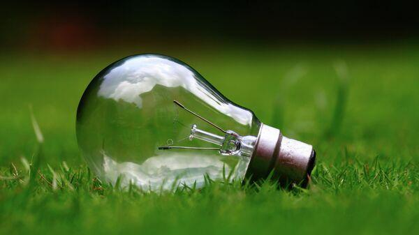 Лампочка в траве - Sputnik Узбекистан
