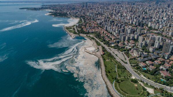 Вид сверху на покрытое слизью Мраморное море в гавани Стамбула - Sputnik Ўзбекистон