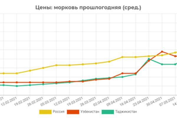 Динамика цен на морковь на основном экспортном рынке сбыта плодоовощной продукции Узбекистана - Sputnik Узбекистан