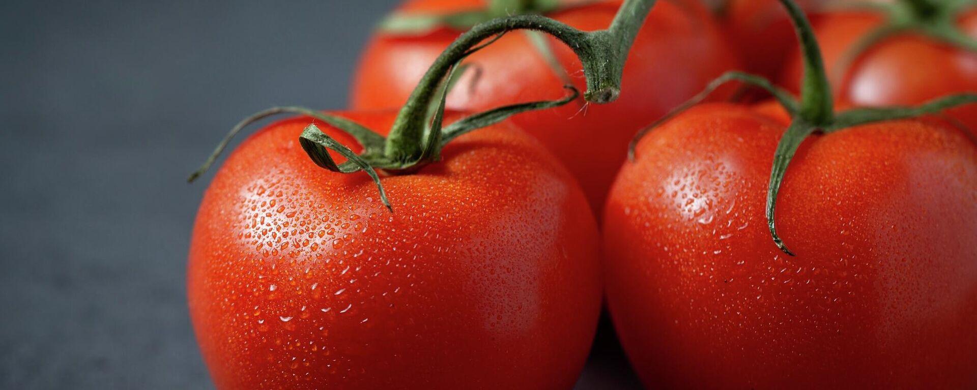 Pomidorы - Sputnik Oʻzbekiston, 1920, 25.06.2021