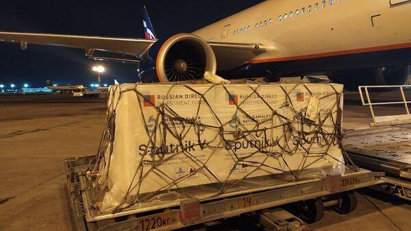 V Tashkent dostavleno 40 tыsyach doz pervogo komponenta  Sputnik V - Sputnik Oʻzbekiston