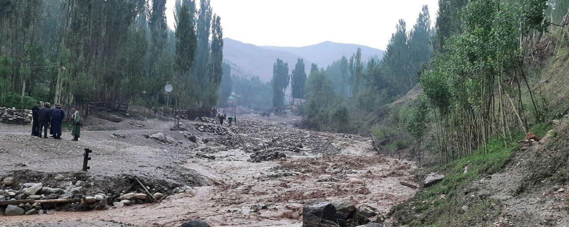20 июля в горных районах Шахрисабза (Кашкадарьинская область) сошел сель - Sputnik Узбекистан, 1920, 21.07.2021