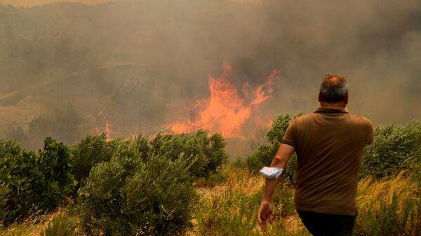 Лесной пожар в Турции - Sputnik Ўзбекистон