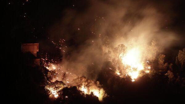 Лесные пожары в Алжире - Sputnik Ўзбекистон