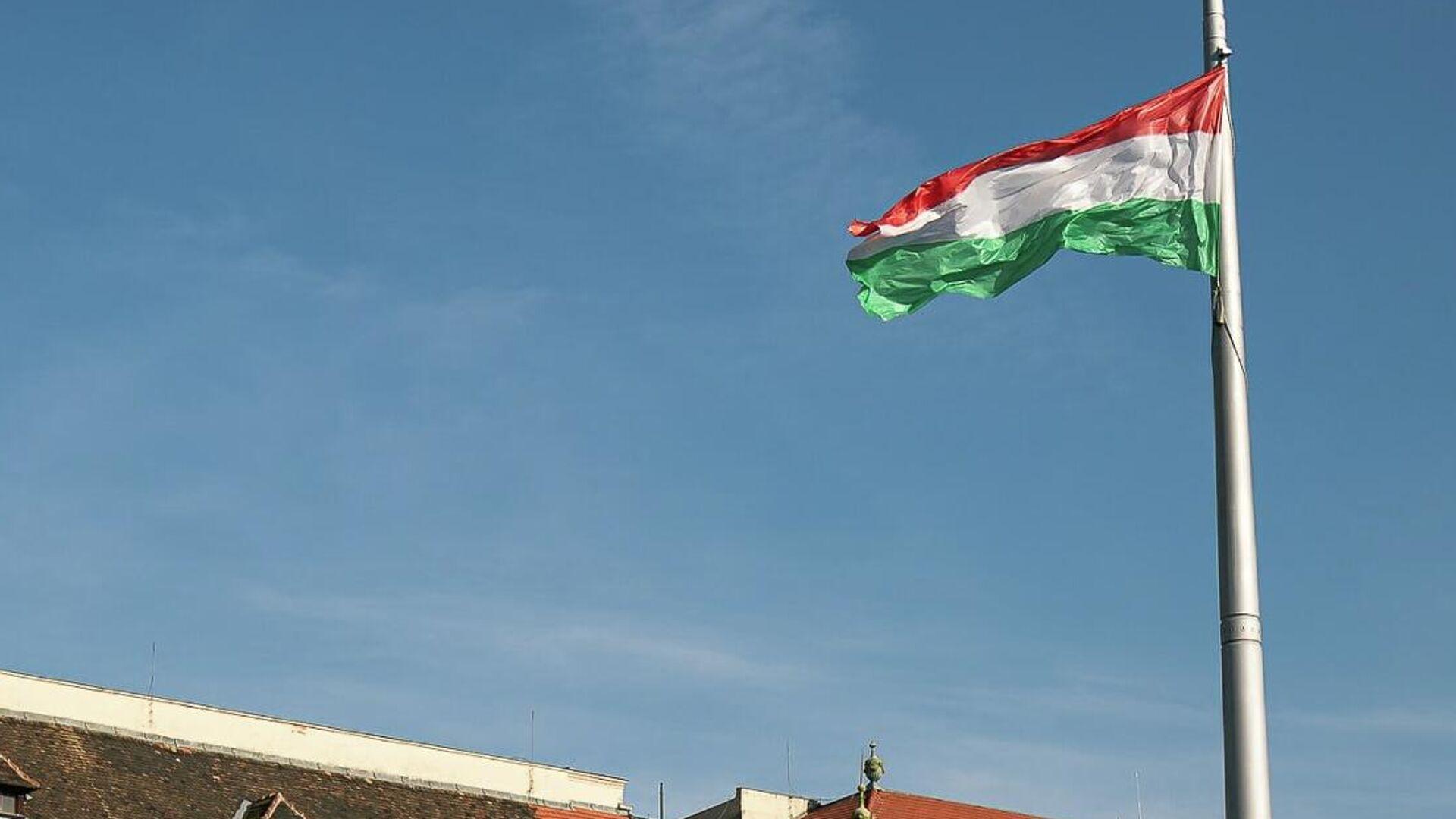 Флаг Венгрии - Sputnik Узбекистан, 1920, 16.06.2021