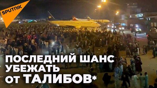 Давка и паника: как люди штурмуют аэропорт Кабула в надежде убежать из Афганистана  - Sputnik Ўзбекистон