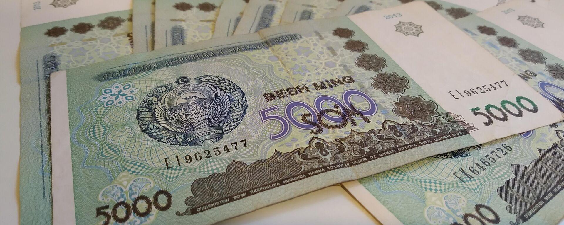 Узбекские деньги, 5000 сумов - Sputnik Узбекистан, 1920, 24.09.2021
