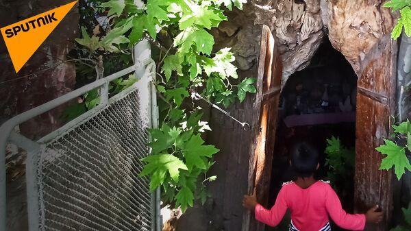 Кто в дереве живет? Как выглядит музей в дупле тысячелетней узбекской чинары  - Sputnik Узбекистан