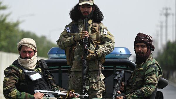 Бойцы талибов - Sputnik Ўзбекистон