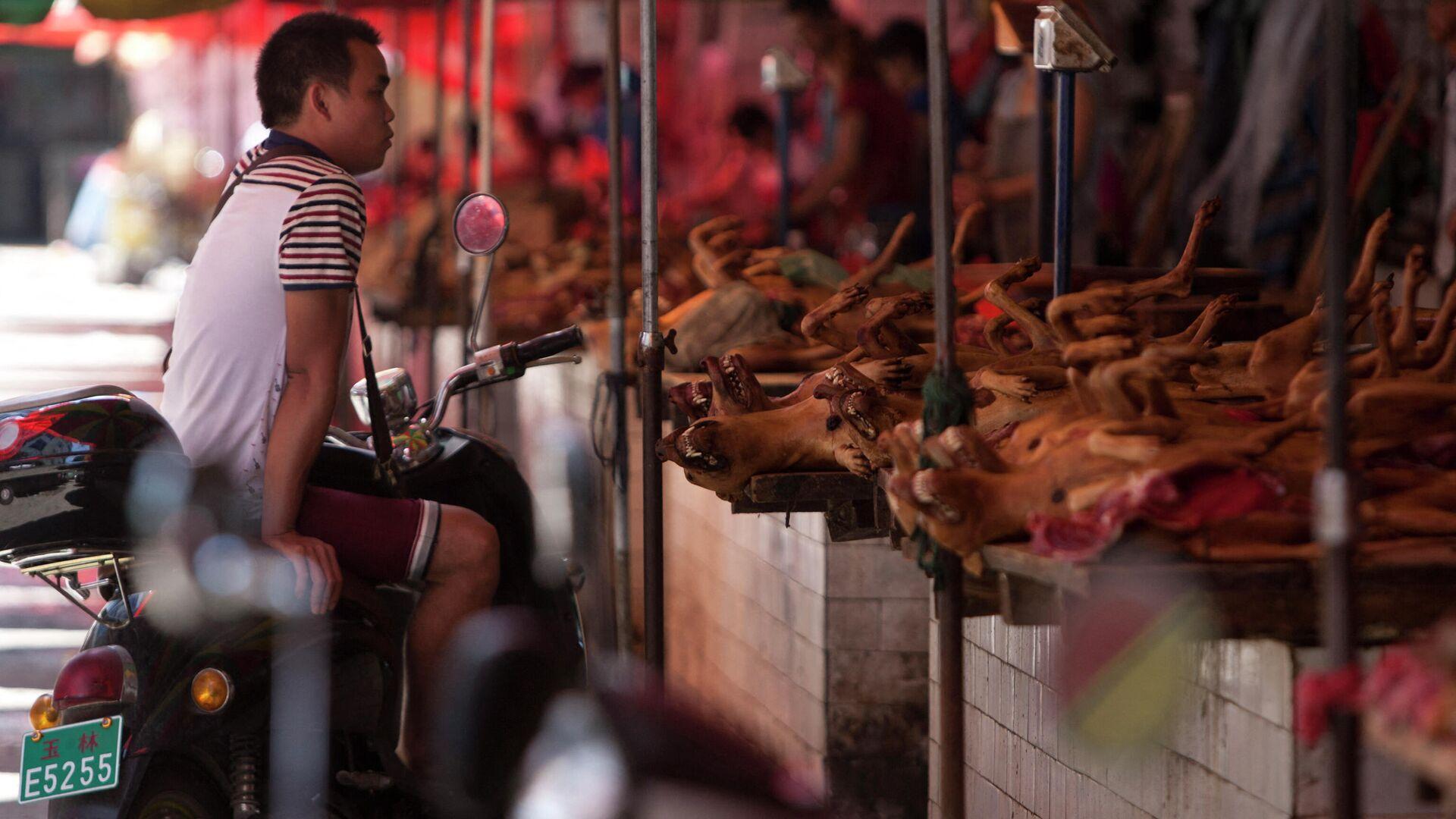 Рынок в Китае, где торгуют мясом собак - Sputnik Ўзбекистон, 1920, 28.09.2021