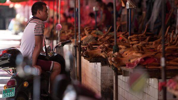 Рынок в Китае, где торгуют мясом собак - Sputnik Ўзбекистон