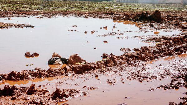 Лужа грязи - Sputnik Узбекистан