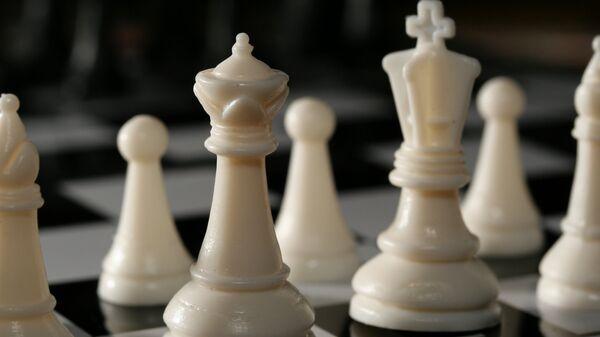 Шахматные фигуры - Sputnik Ўзбекистон