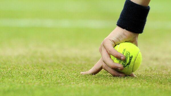 Tennis toʻpi - Sputnik Oʻzbekiston