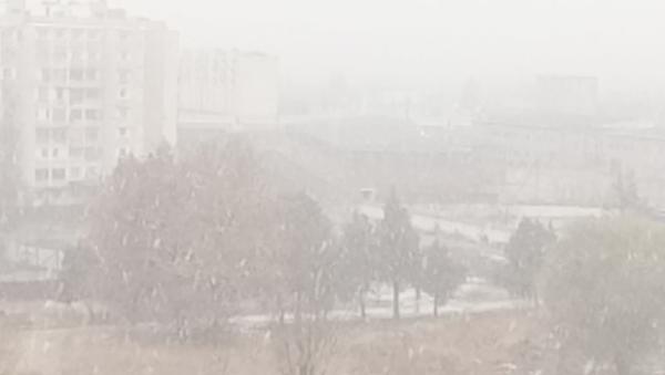 Snegopad v Tashkente - Sputnik Oʻzbekiston