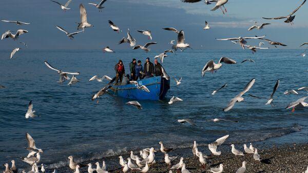 Рыбаки возвращаются после ловли рыбы в Черном море, Сочи - Sputnik Узбекистан