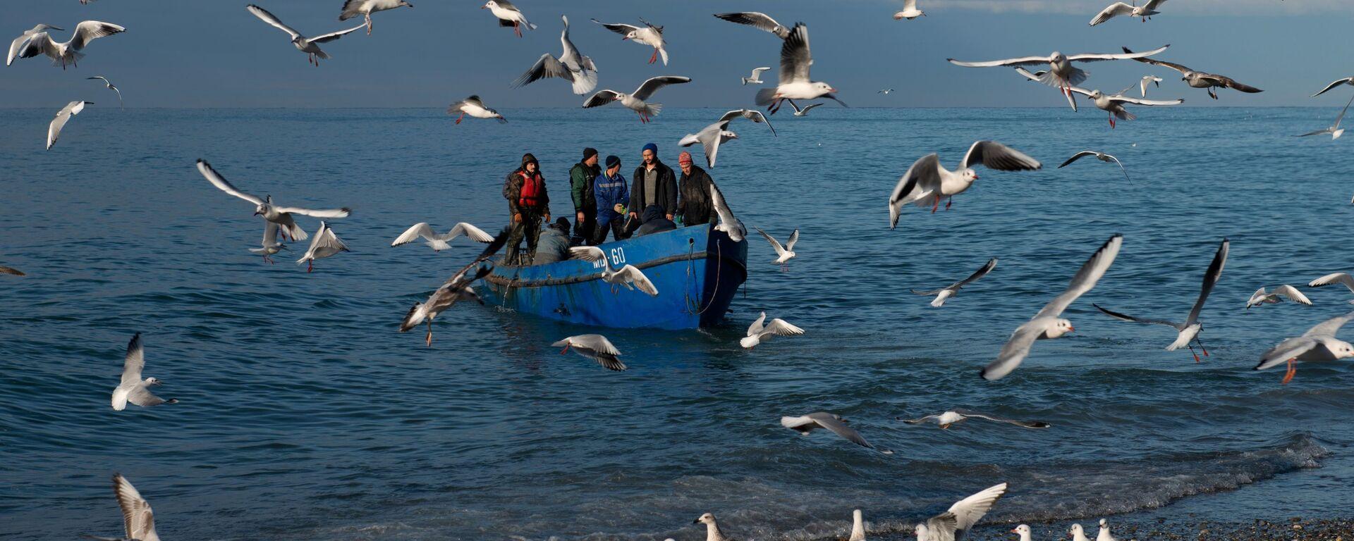 Рыбаки возвращаются после ловли рыбы в Черном море, Сочи - Sputnik Узбекистан, 1920, 25.09.2021