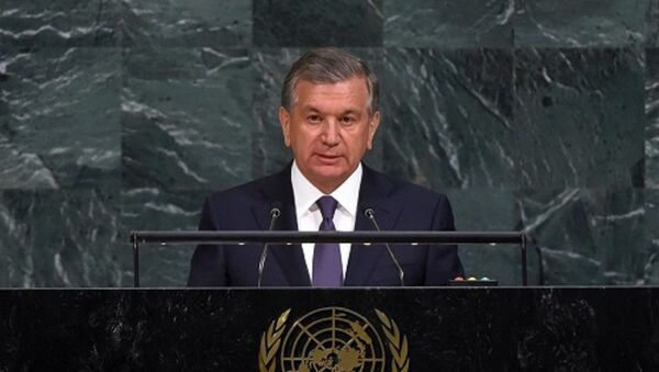 Генеральная ассамблея ООН приняла резолюцию, разработанную Узбекистаном - Sputnik Ўзбекистон