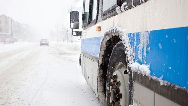 Автобус на дороге - Sputnik Ўзбекистон