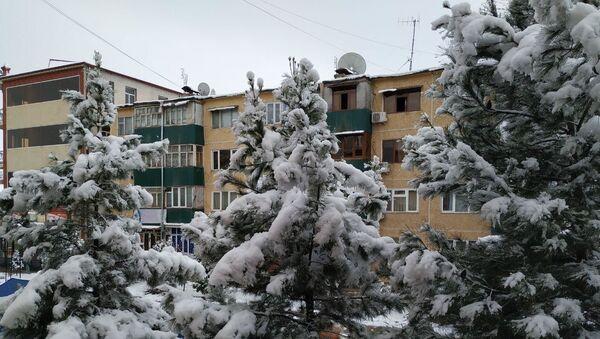Снег в Самарканде - Sputnik Ўзбекистон