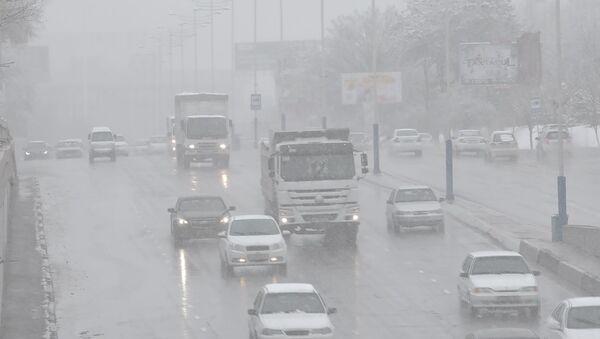 Снегопад в Ташкенте - Sputnik Ўзбекистон