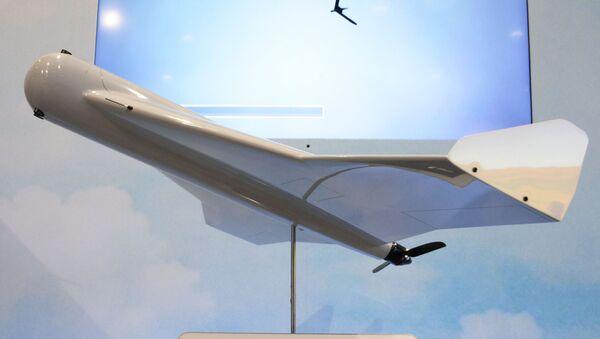 Международная выставка вооружений IDEX-2019 - Sputnik Ўзбекистон