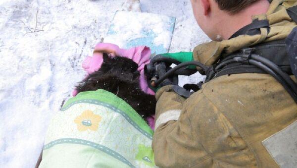 В России пожарные откачали вынесенного из пожара кота - Sputnik Узбекистан