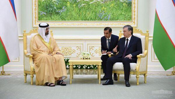 Президент Узбекистана принял делегацию Объединенных Арабских Эмиратов - Sputnik Ўзбекистон