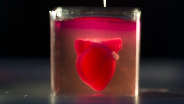 В мире впервые напечатали живое сердце на 3D-принтере - Sputnik Ўзбекистон