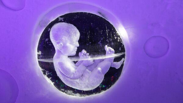 Эмбрион, архивное фото - Sputnik Узбекистан